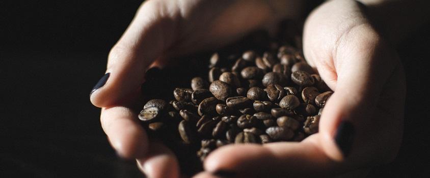 обжарка кофе_бизнес в декрете